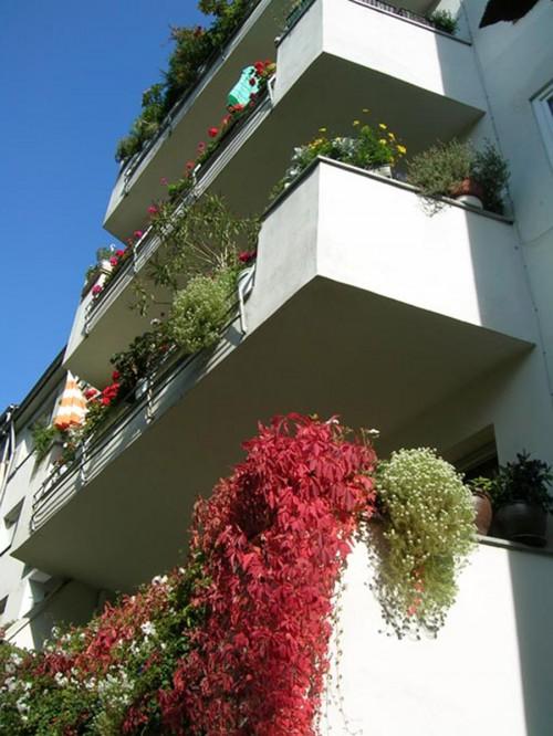 Balkone-Gartenseite